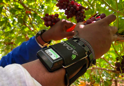 Harvest Scanning